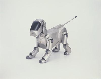 给宠物的智能机器球