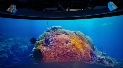 索尼探梦科技馆开启8k海底世界